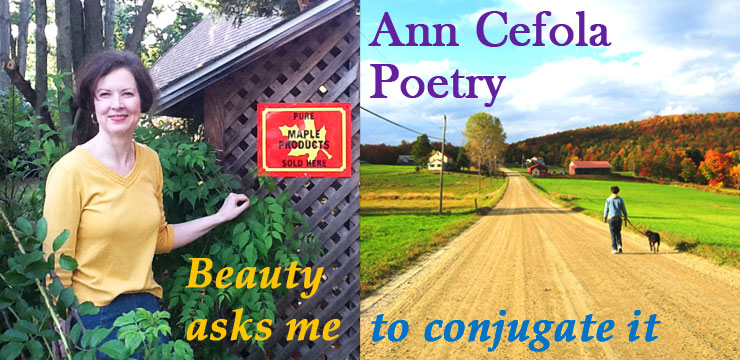Ann Cefola Poetry